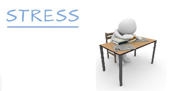 Le Indicazioni Normative per il Rischio Stress Lavoro Correlato